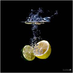 Splash of Zest (LeePellingPhotography.co.uk) Tags: 2 fish water photography aquarium tank bubbles plus splash refreshing zest aputure trigmaster