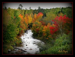 Little River (clickclique) Tags: trees red orange fall river citritbestofyours joywithphotos travelpilgrems