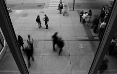 (-- brian cameron --) Tags: windows people blackandwhite bw toronto motion blur glass blackwhite pedestrians queenstreet 550d streephotography