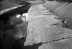 Moonee Ponds Creek 2 (octo fish) Tags: bw film water creek 35mm concrete trix surface drain iso1600 pentaxspotmatic microphen smctakumar