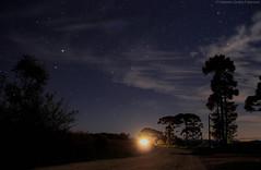 Interior de Fraiburgo (fabsciack) Tags: trees brazil tree nature brasil night canon stars natureza estrelas noite nightphoto santacatarina arvore arvores floresta mato fotonoturna fraiburgo canoneos7d valedocontestado