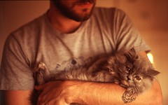 P.J. (Derek Fernandes) Tags: film cat beard photography derek fernandes