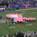 Pink Ribbon during the National Anthem at Browns-Giants Game