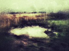 Water gathered on the fields (Sarah Jarrett) Tags: autumn motion blur landscape slowshutter dreamlike iphoneart iphoneography