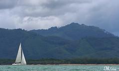 (MUBARAK Photo) Tags: sea canon asian thailand boat 5d 70200 mphoto 2012 qatar mubarak ا مبارك الدوحه شراع مركب الدوسري مارك كانون قارب تايلند اسيا marklll aldosari