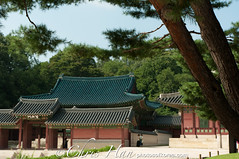Travel Photo Korea (Damien Hansell Photography) Tags: building landscape asia traditional scenic royal tranquility palace korea zen seoul kr fareast touristattraction traditionalculture traveldestination