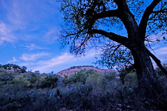 _DSC5402_edited-1 (musicjoy) Tags: texasstateparks enchantedrock nightphotography tokina1116mm28 nikond300