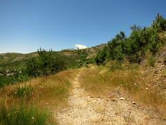 IMG_9227 (craigharrisnelson) Tags: manteigas portugal hiking boar route