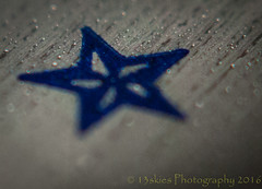 Blue star (13skies) Tags: happymacromonday star bluestar hmm macro blue close macromondaystar