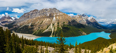 Bliss (djryan78) Tags: mountpatterson landscape sigma cloudy mountains outdoor canon mtpatterson clouds banffnationalpark peytolake travel forest icefieldsparkway bowsummit sigma24105 mountain canadianrockies water lake canon6d 24105 dslr trees summer 6d panorama tree morning rockymountains banff nationalpark cloud canada peytopeak rockies caldronpeak alberta