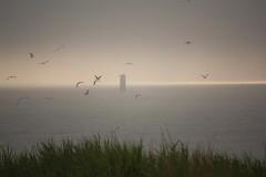 La luz despus de las nubes.NWN.Explore 24-8-16 (melamasso) Tags: nwn