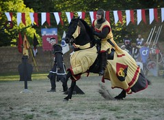 A Knight In Action (FlorDeOro) Tags: nikon d300 photography animal horse knight medieval highspeed summer gotland visby sweden mijarajc