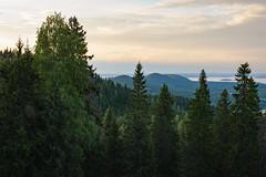 Koli, Finland (tahkani) Tags: koli finland hiking backpacking tent landscape color nature woods summer colorful colourful 2470 28 nikon d610 outdoor