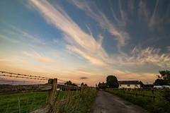Moss Bank, St Helens, Merseyside (ianbonnell) Tags: mossbank sthelens billinge merseyside rural goldenhour sky