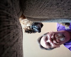 The Odd Perspective (Flickr Goot) Tags: september 2016 samsung galaxy s6 selfie selfportrait rocket dog mutt canine pet perspective available light project 365 project365