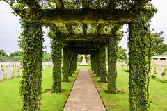 Madras War Cemetery, Chennai (rvk82) Tags: 2016 architecture chennai greenery history india madraswarcemetery nandambakkam nikkor1424mm nikon nikond810 photography rvk rvkphotography raghukumarphotography september2016 southindia tamilnadu wideangle wideangleimages rvkphotographycom