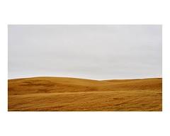 hbertville (Mriol Lehmann) Tags: landscape fields rural minimalism cereals canada quebec lacstjean