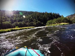 Rafting the Klamath River: Osprey (Class III, Mile 0.6) (BLMOregon) Tags: rafting rapids raft pov klamath river wild scenic blm bureauoflandmanagement upperklamath recreation oregon klamathfalls osprey