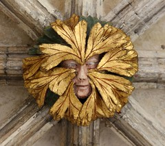Norwich Cathedral (richardr) Tags: norwich cathedral norwichcathedral norfolk church boss greenman myth mythology medieval building architecture england english britain british greatbritain uk unitedkingdom europe european history heritage historic old eastanglia