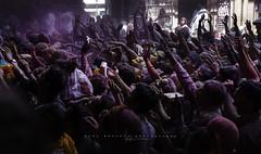 Holi en Banke Bihari Temple. Vrindavan, Uttar Pradesh. India. (Ral Barrero fotografa) Tags: india indian holi holy vrindavan color festival bankebihari travel tradition