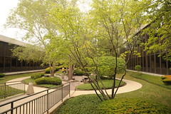 Circular courtyard, people talking, trees, lawn, curved walkway, building, Motorola Solutions, Schaumburg, Illinois, USA (Wonderlane) Tags: park trees usa building corporate illinois lawn schaumburg environment intuitive horizonal 1620 peopletalking curvedwalkway circularcourtyard motorolasolutions