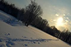 Vanha Kaupunki (fede_gen88) Tags: trees winter snow cold ice nature water suomi finland river frozen helsinki woods nikon europe oldtown vanhakaupunki vantaariver d5100