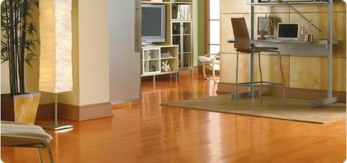 maple wooden  floors