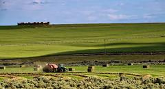Baling (robinlamb1) Tags: usa tractor landscape outdoors washington state bluesky machinery baler easternwashington greenfields