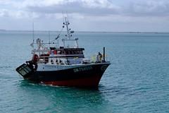 DSCF1472 (Jc Mercier) Tags: pche retourdepche fishermen marins cancale