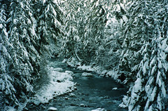 (all this is true) Tags: canona1 canonfd35105mmf35 cheakamusriver winter snow snowyriver ice