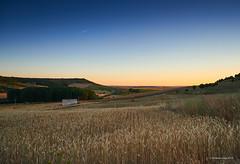 Sunset over Urueña (III)/Atardecer sobre Urueña (III) (Modesto Vega) Tags: urueña sunset fieldsofcastille camposdecastilla atardecer sprinkler landscape outdoor aspersores plane planewake avion esteladeavion nikon nikond600 fullframe