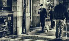 (Dale Michelsohn) Tags: noir street shoppers walking people dog monotone blackandwhite shadow dalemichelsohn stockholm sepia