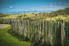 UK - Scotland - St Andrews - Beach (Marcial Bernabeu) Tags: marcial bernabeu bernabu uk united kingdom unitedkingdom reino unido reinounido granbretaa greatbritain escocia scotland standrews playa beach