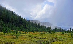 Highwood Pass, Alberta. (GWP_Photo) Tags: alberta canada highwood mountains rockymountains nikon d750 nikkor 24120 country kananaskis