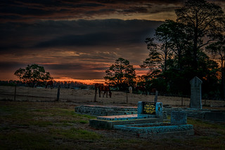 Horses and Tombstones at Sundown