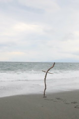 fishing chair? (HAMACHI!) Tags: oiso kanagawa 2016 japan summer autumn sea