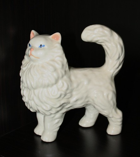 persian blue eyed tom cat  - 2001