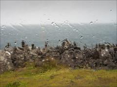 Rain on the Window Skye (The Terry Eve Archive) Tags: sea abstract skye scotland greysky wetglass rocktowers