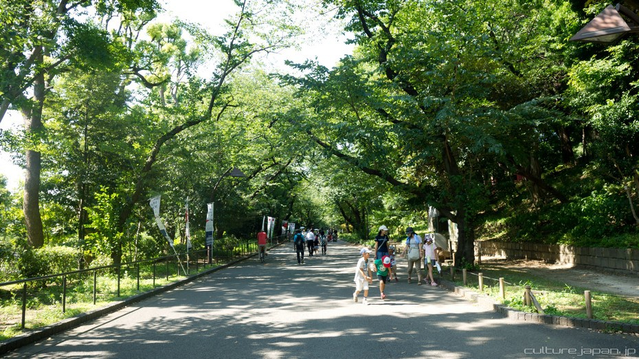 Ueno in the Summer