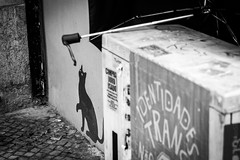 Anytime young (alex_inside) Tags: street bw black portugal strange up wall umbrella cat jump eyes lisbon hang plat