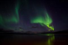Aurora Borealis - Northern Lights (SteinaMatt) Tags: west matt iceland september aurora ísland 2012 borealis steinunn búðardalur steina vesturland hvammsfjörður matthíasdóttir búðardalurnorðurljósnorthernlights