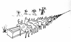 Long Cattle trough (Robin Hutton) Tags: work done between 1992 4 derby western australia the designs based aboriginal art currently drawn or painted by peoples around robin huttonart artwork graphic line drawing rock robinhuttonart funny