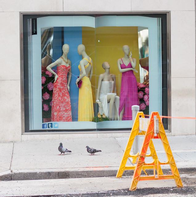 nyc newyorkcity windows ny newyork window store display displays storewindow windowdisplay storewindows windowdisplays bcbgmaxazria
