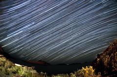 Starry Night (Ryan J Murphy) Tags: newfoundland stars nightsky d300 torscove startrail ryanjmurphy septstars23u