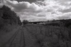 Tow Path (Saturated Imagery) Tags: bridge blackandwhite slr film monochrome 35mm ir canal motorway leeds infrared towpath redfilter microphen aireandcaldernavigation vivitar28mmf25 ilfordmicrophen konicair750 prakticatl5b developer:brand=ilford developer:name=ilfordmicrophen filmdev:recipe=8022