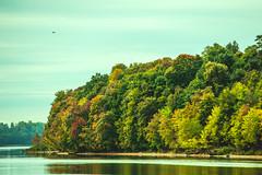 Colorful #269/365 (A. Aleksandraviius) Tags: autumn trees macro ex colors nikon sigma apo ii 365 70200 f28 lithuania dg 2012 kaunas 70200mm project365 hsm 365days d700 269365 nikond700 3652012