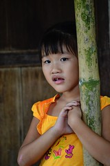 Tree hugger? (Fluffyclouds111) Tags: life portrait orange girl asian eyes pretty child young bamboo vietnam local mekongdelta