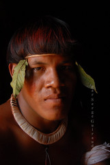 kuikuro (serge guiraud) Tags: brazil portrait festival brasil amazon para tribal exhibition exposition xingu tribe ethnic matogrosso jabiru tribo brésil plume amazonia tribu amazonie matis amazone etnic amérique xavante asurini amérindien etnia kaiapo gaviao kuarup ethnie yawalapiti kayapo javari kuikuro xerente peinturecorporelle kalapalo karaja mehinako kamaiura yawari artamérindien sudamérique tapirapé peuplesindigenes povoindigena parcduxingu parquedoxingu sergeguiraud jabiruprod expositionamazonie artdelaplume artducorps bassinamazonien amazon'stribe amazonieindidennecom basinamazonien zo'é hetohoky parqueindidigenadoxingu jungletribes populationautochtones indiend'amazonie
