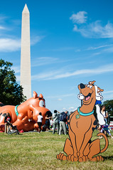 Cesar Millan DC Family Pack Walk 2012 (FlamboyantShooter) Tags: family dog dc walk pack cesar 2012 millan whisperer