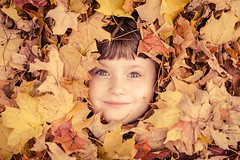 Anna in the leaves (Kilkennycat) Tags: autumn boy fall girl canon season children fun happy child smiles 50mm14 foliage plaid 60d kilkennycat ryanconners